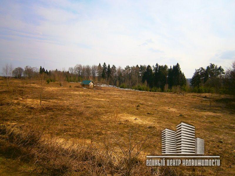 очевидна практически охотбаза ильинское дмитровский район фото можно эти
